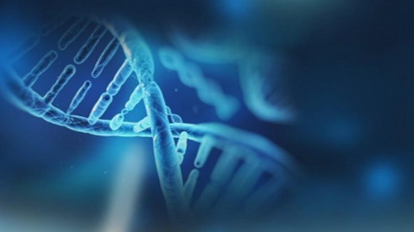 Bulgaria Will Join an Agreement on Automated Exchange of DNA