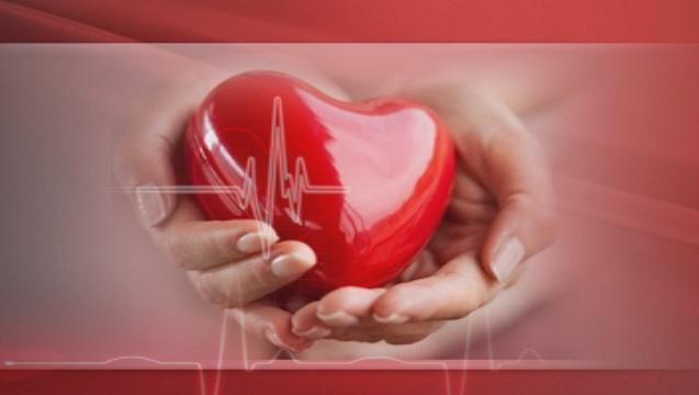 Надежда за живот - повече за лечението със стволови клетки