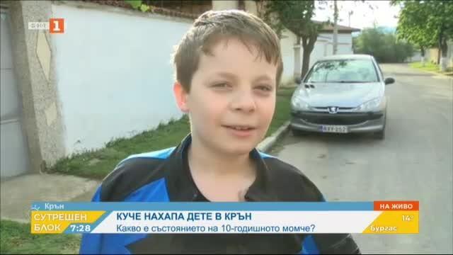 Какво е състоянието на 10-годишното момче, нахапано от куче в Крън?