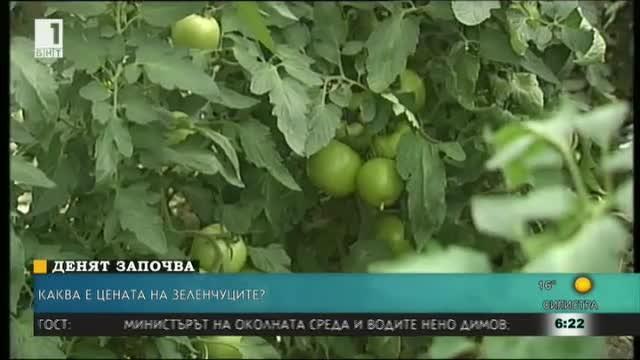 Ще има ли достатъчно домати и краставици това лято