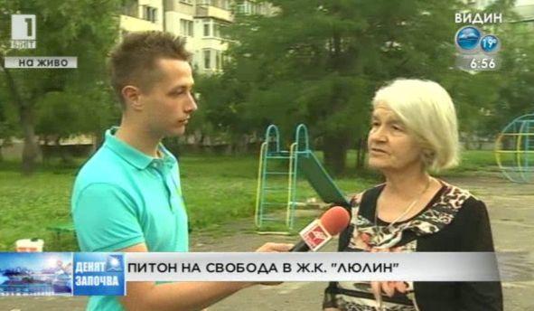 Питон на свобода в ж.к. Люлин