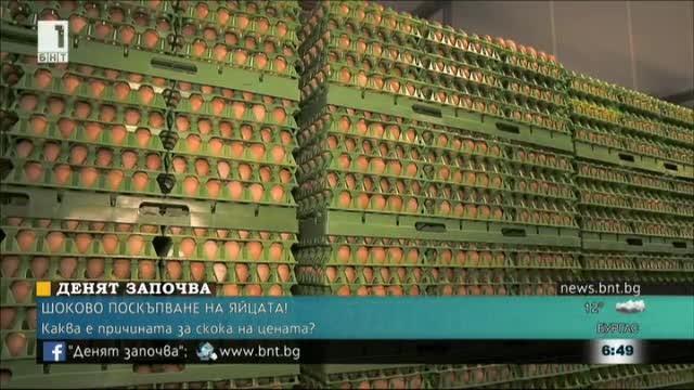 Експертите: Поскъпването на яйцата ще продължи около 2-3 седмици