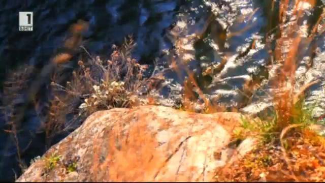 Подпочвените води сигнализират за земетресения - в Зелена светлина - 9.01.2015