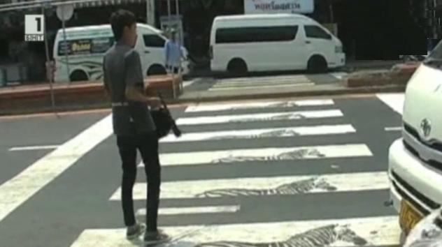 Зебри върху пешеходна пътека