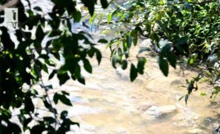 След намесата на Денят започва почистиха коритото на река Новоселска в Сливен