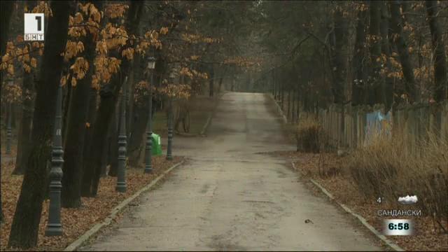 Отрова в софийските паркове убива домашни и улични кучета