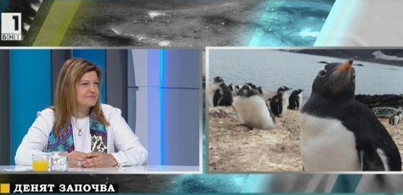 Леденият континент отблизо с Ирена Соколова