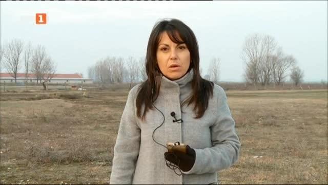 Мерки срещу птичия грип във фермата край град Раковски