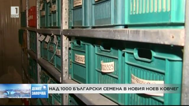 Над 1000 семена в новия Ноев ковчег