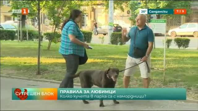 След зачестилите случаи на нападнати от домашни кучета - какъв е контролът?