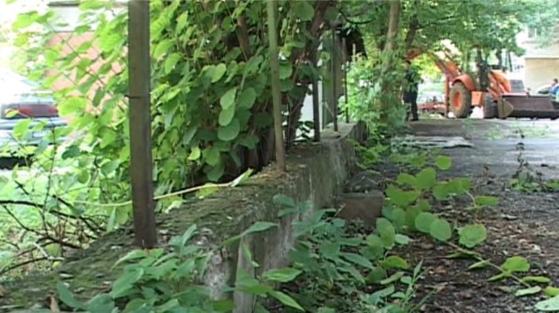 Община разрушава ограда на частен имот