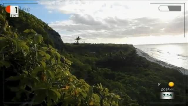Остров Хендерсън - сметището на Земята