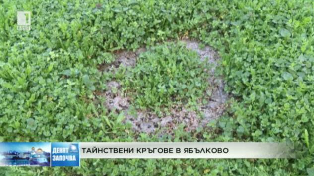 Тайнствени кръгове в Ябълково
