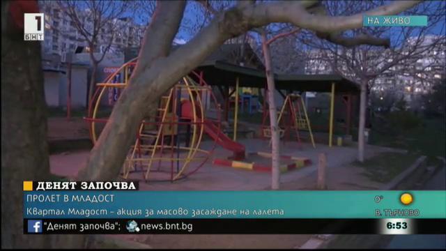 Масово засаждане на цветя софийския квартал Младост
