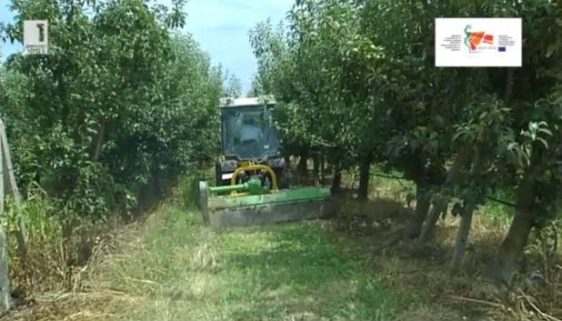 Градина в с.Богомилово под знака на Програмата за развитие на селските райони