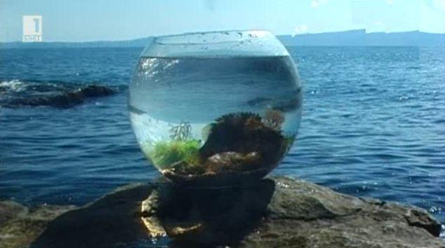 Под морските вълни - Жажда за море