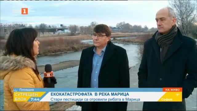Екокатастрофа в Марица: Стари пестициди са отровили рибата в реката