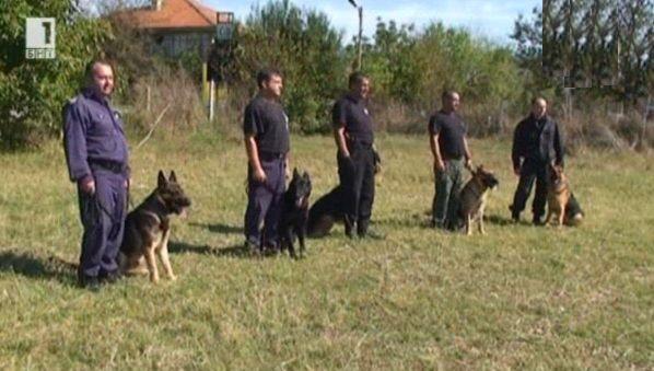 Какви умения трябва да усвои полицейското куче?