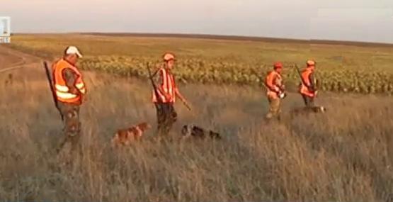 Законът и ние: Ловците против промяна в закона за ловното оръжие