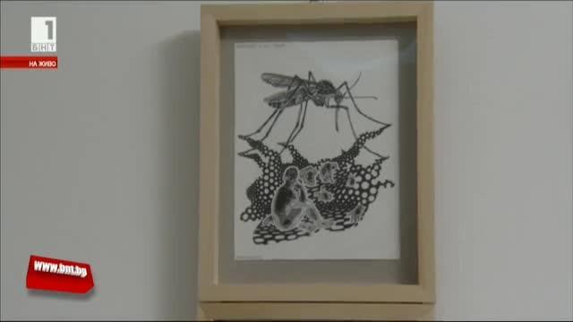 Изложба Тайните на насекомите
