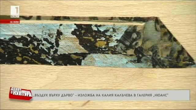 Въздух върху дърво - изложба на Калия Калъчева в галерия Нюанс