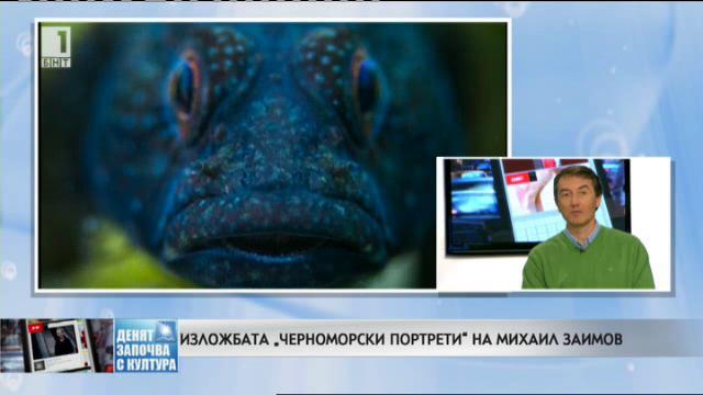 """Изложбата """"Черноморски портрети"""" на Михаил Заимов"""