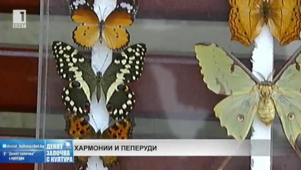 Хоби: Хармонии и пеперуди