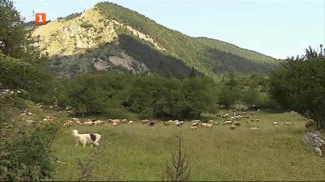 Ще спре ли туризмът обезлюдяването на селските райони?