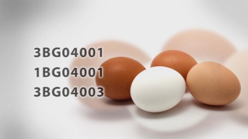 Откриха фипронил в яйца на български производител