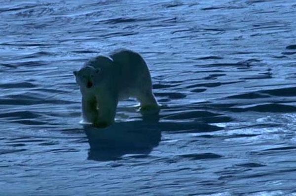 Ледената планета: По тънък лед