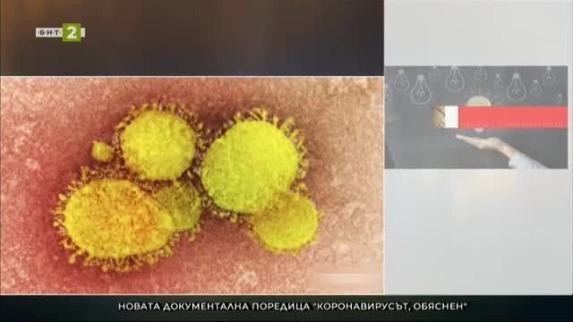Коронавирусът, обяснен - нов сериал от поредицата Обяснено