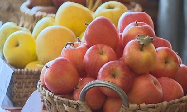 Столично училище иска да се откаже от програмата Плод и мляко