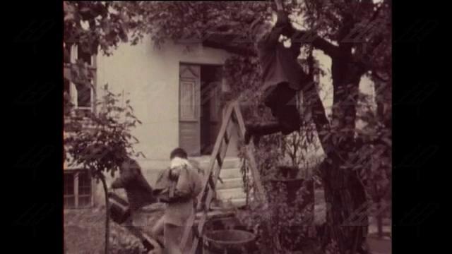 """""""А с Альоша сме приятели"""", 1967 година"""