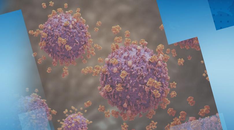 Как се води битката с коронавируса?