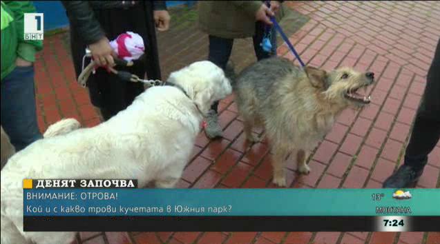 Kой и с какво трови кучетата в Южния парк?