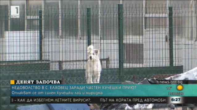 Частен кучешки приют тормози жители на рудоземското село Елховец