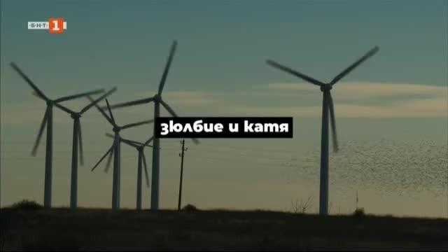 Историите на Зюлбие от Каварна и на Катя от Благоевград