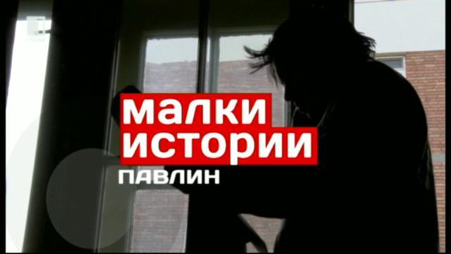 Малки истории - 17 март 2014: Историята на Павлин