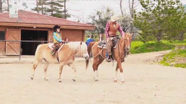 Как се язди истински кон