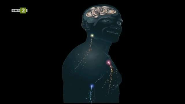 Магията на мозъка и непознатата хипноза