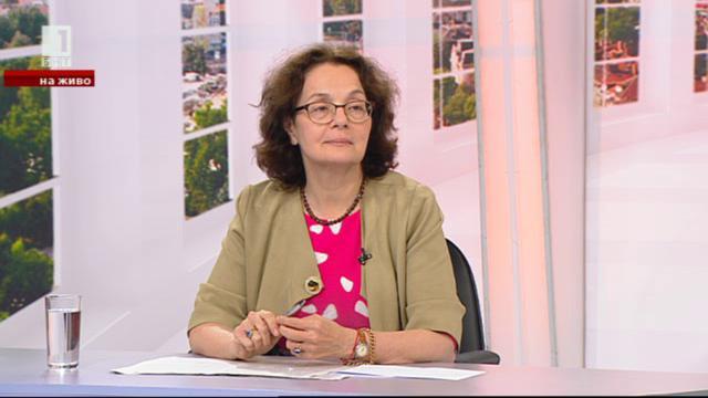 Румяна Коларова: Системата на професионалните училища в момента е пред катастрофа
