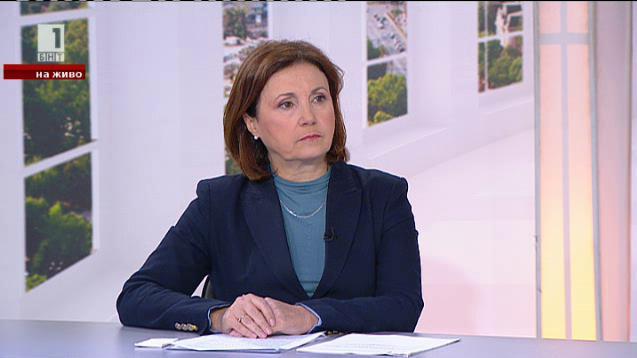 Румяна Бъчварова: Случаят с простреляния мигрант е трагичен