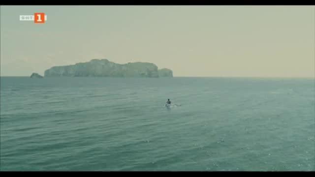 Островът на сините птици