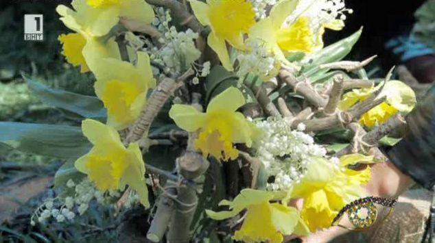 Как да направим букет за Цветница със съчки от гората?
