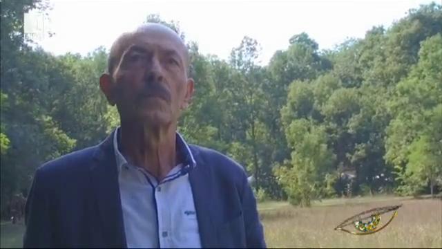 Димитър Шумналиев в едно Интервю в парка