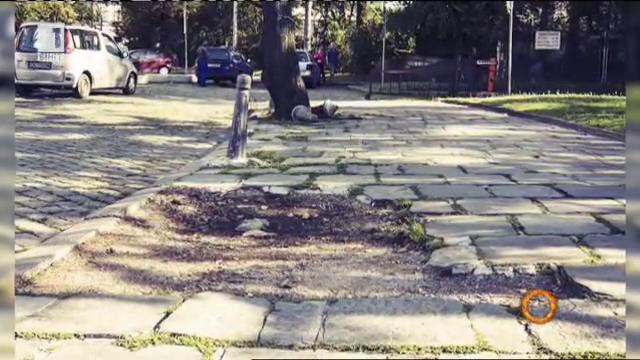 Квартал на тротоарите - културна революция срещу неприветливите тротоари