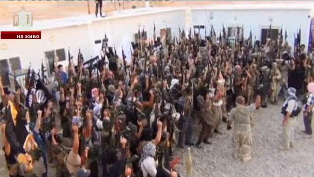 В леговището на Ислямска държава