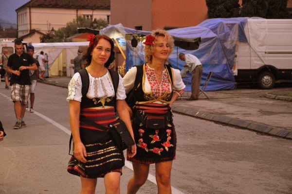 снимка 2 Посока Сърбия