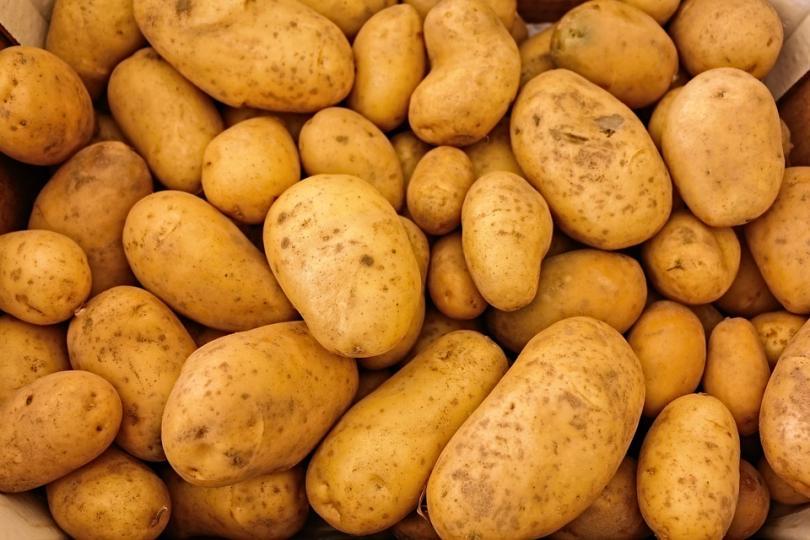 Проблемите при производството на лука и картофите