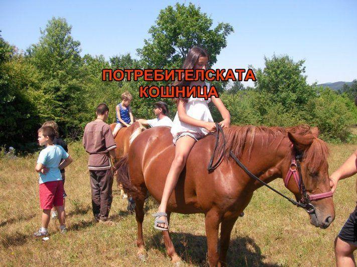 Ваканция на кон